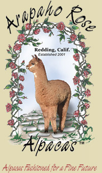 Arapaho Rose Alpacas, Redding, CA